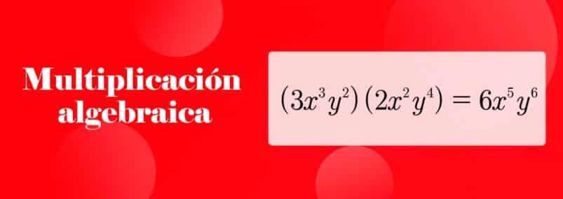 ¿Que es la Multiplicación Algebraica